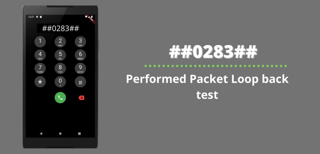 Performed Packet Loop back test